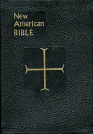 Bibles - Full Size